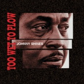 Johnny Shines - Too Wet To Plow