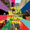 Wild Beasts - Mecca artwork