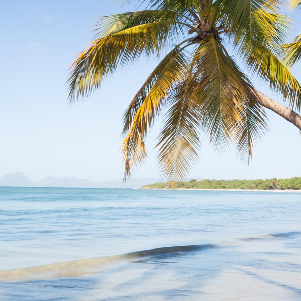 La Isla Bonita: Tropical Island Songs