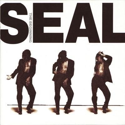 The Beginning - Seal