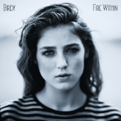 Fire Within (Deluxe Version)