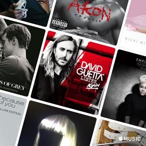 David Guetta and Friends