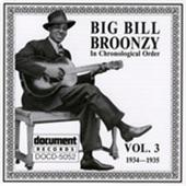 Big Bill Broonzy - Good Jelly
