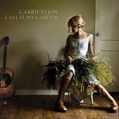 Carrie Elkin - Jesse Likes Birds