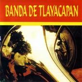 Banda de Tlayacapan - El Periquito Alegre