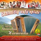 Schneidig aufg'spielt mit der steirischen Harmonika
