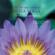 Swami Kriyananda - The Art & Science of Raja Yoga: What Is a Guru?