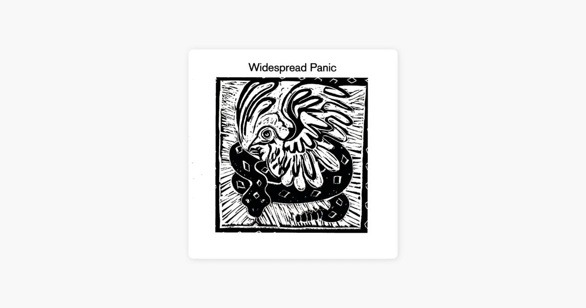 widespread-panic-boob