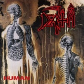 Death - Lack of Comprehension