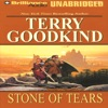 Stone of Tears: Sword of Truth, Book 2 (Unabridged)