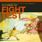 The Flaming Lips - Fight Test