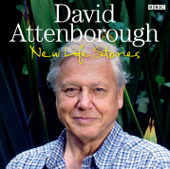 David Attenborough's New Life Stories: Kiwi (Episode 2, Series 2)