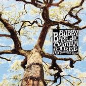 Bobby Bare Jr. - The Summer Of '93