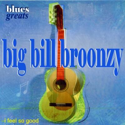 Blues Greats (I Feel So Good) - Big Bill Broonzy