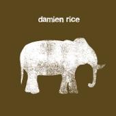 Damien Rice - Cannonball - Radio Remix