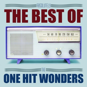 Absolutely The Best Of One Hit Wonders