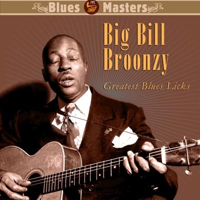 Greatest Blues Licks - Big Bill Broonzy