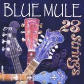 Blue Mule - Naturita Suite