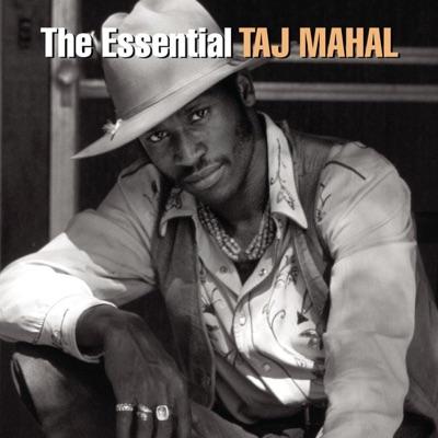 The Essential: Taj Mahal - Taj Mahal