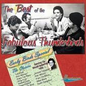 The Fabulous Thunderbirds - I Hear You Knockin
