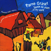 Járom Az Utam (In My World)