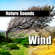 Whistling Wind Gusts - Nature Sounds