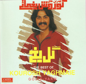 Kourosh Yaghmaei - Leila