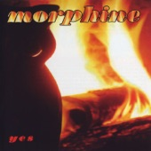 Morphine - Honey White