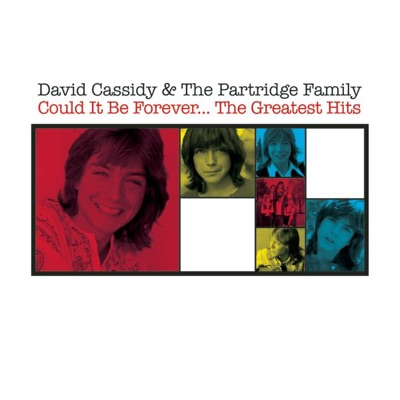 Could It Be Forever - The Greatest Hits - The Partridge Family