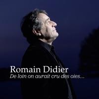 Romain Didier - Pétasse Blues