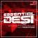 Essential Desi - Panjabi Hit Squad