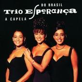Trio Esperança - Casaco Marrom