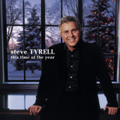 This Time Of The Year-Steve Tyrell
