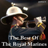 The Band of H M Royal Marines - Hearts of Oak / A Life On the Ocean Wave / Prelude & Sunset artwork