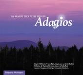 Vivaldi - Iona Brown - Academy of St. Martin-in-the-Fields - II. Largo