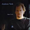Into Dark - Andrew York