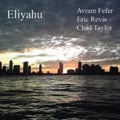 Avram Fefer - Song for Dyani (Chad Taylor)