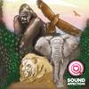 Elephant (Sound Effect) - Sound Affection