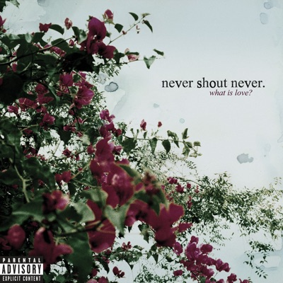What Is Love? (Bonus Track Version) - Never Shout Never