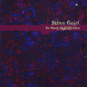 There Is So Much Magnificence - Steve Gold - Steve Gold