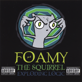 Anime-Foamy the Squirrel