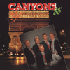Canyons - Stad i ljus (Instrumental) bild
