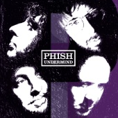 Phish - The Connection