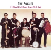 The Pogues - Medley (The Recruiting Sergeant/The Rocky Road To Dublin/Galway Races)