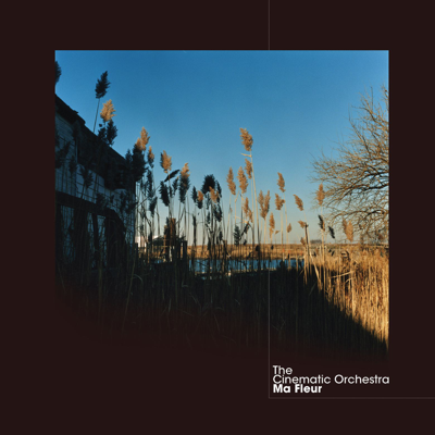 To Build a Home (feat. Patrick Watson) - The Cinematic Orchestra song