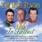 The Irish Tenors - Stars Of The Country Down