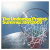 The Underdog Project - Summer Jam 2003 (DJ F.R.A.N.K.'s Summermix Short) artwork