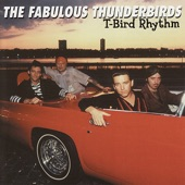The Fabulous Thunderbirds - Diddy Wah Diddy