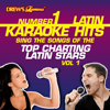Drew's Famous #1 Latin Karaoke Hits: Sing the Songs of the Top Charting Latin Stars Vol. 1 - Reyes De Cancion
