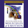 Candace B. Pert, Ph.D. - Molecules of Emotion: Why You Feel the Way You Feel (Abridged Nonfiction)  artwork